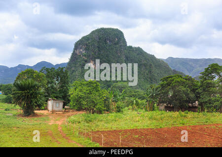 Viñales Valley panorama, view across lush green landscape of the popular rural tourist travel destination, Pinar del Rio Province, Cuba - Stock Photo