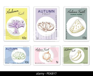 Autumn Fruits, Post Stamps Set of Hand Drawn Sketch Ensete Banana, Cultivated Banana, Pisang Mas, Muskmelon and Watermelon in Trendy Origami Deep Pape - Stock Photo