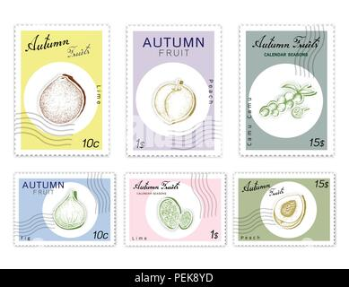 Autumn Fruits, Post Stamps Set of Hand Drawn Sketch Camu Camu, Fig, Lime and Peach or Nectarine in Trendy Origami Deep Paper Art Carving Style. - Stock Photo