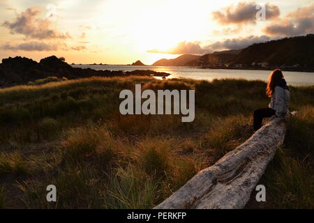 Nice sunset with a girl on a tree trunk. - Stock Photo