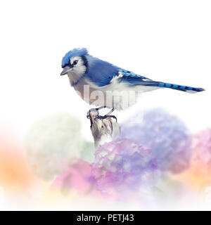 Blue jay in Flower garden,watercolor painting on white background - Stock Photo