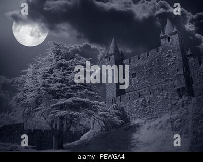 Medieval castle in a cloudy full moon night - Stock Photo