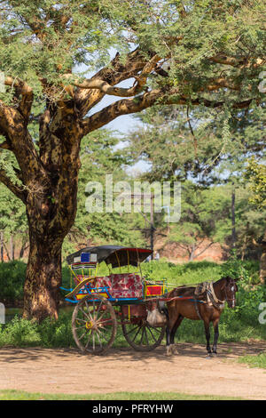 Horse with the cart waiting for tourists in the shadow in Bagan, Myanmar. - Stock Photo