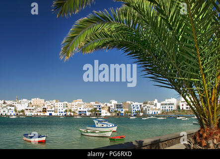 ARRECIFE PALM TREE El Charco de San Gines, a picturesque inlet in Arrecife town centre with restaurants and boats, Lanzarote, Canary Islands, Spain - Stock Photo