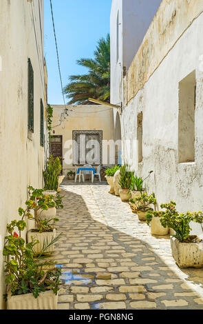 The narrow backstreet with white house walls is decorated with numerous plants in pots, Mahdia, Tunisia. - Stock Photo