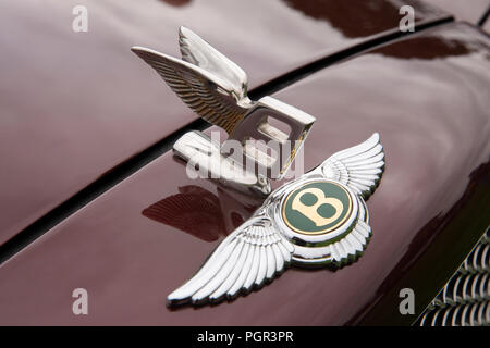 UK, England, Cheshire, Stockport, Woodsmoor Car Show, flying B badges on radiator of 1999 Bentley Arnage saloon car - Stock Photo