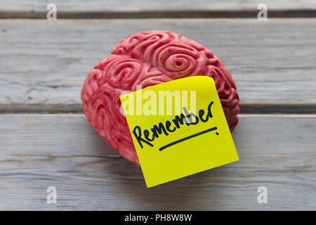 Remember label stuck on a brain - Stock Photo