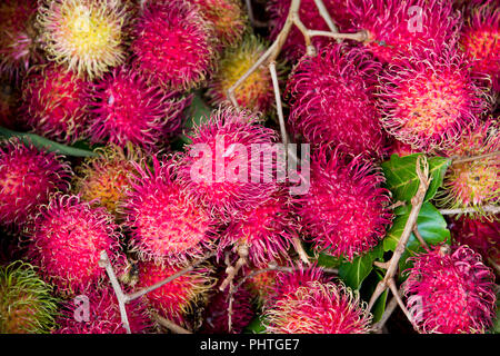 Horizontal close up of rambutans. - Stock Photo