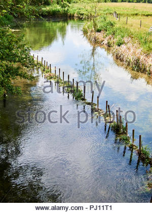 Chalk stream in English countryside - Stock Photo