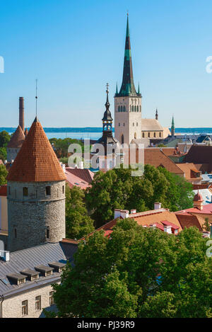 Tallinn summer city, view across the towers and rooftops of the medieval Lower Town area of Tallinn with St Olaf's Church on the skyline, Estonia. - Stock Photo