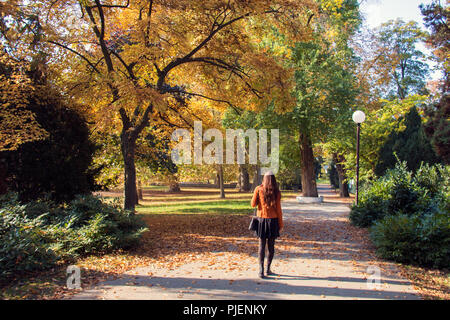 Sidewalk linked with trees and bushes, peaceful city park at autumn, woman from rear view is walking, sunny day - Stock Photo