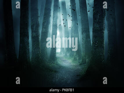 A pathway between trees leading into a dark and misty forest. Photo Composite. - Stock Photo