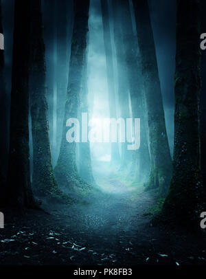 A dark and moody forest at night with a pathway leading through it. Photo composite. - Stock Photo