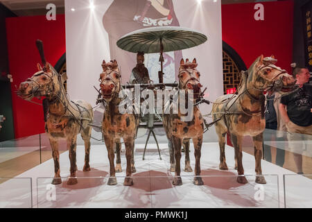 Liverpool William Brown Street World Museum China's First Emperor & The Terracotta Warriors Exhibition chariot four horses - Stock Photo