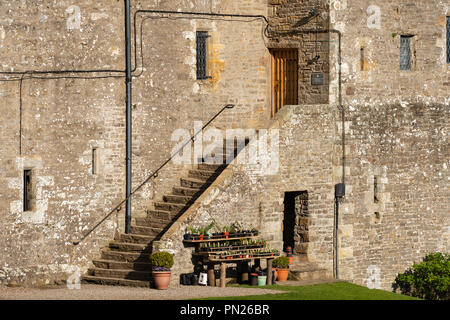 Flight of external stone steps leading to door in west range of historic medieval castle - Bolton Castle, Wensleydale, North Yorkshire England, UK - Stock Photo
