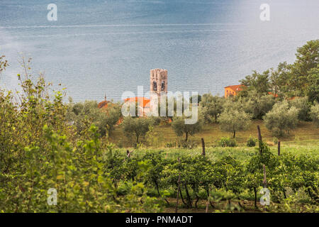 The small village, olive trees and vineyards on the slopes of Monte Isola island in Lake Iseo. Italy - Stock Photo