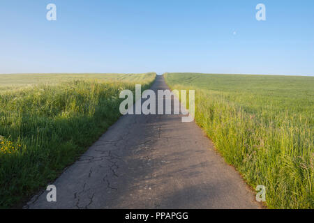 Country lane between fields in spring, Vielbrunn, Odenwald, Hesse, Germany - Stock Photo