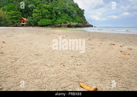 Ghost or sand crab burrows on the beach with white sand, yellow leaves and rocky limestone cliff at Pathio District of Chumphon province of Thailand. - Stock Photo