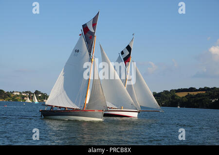 Traditional Falmouth working boats under sail competing in a regatta in the Fal estuary - Stock Photo