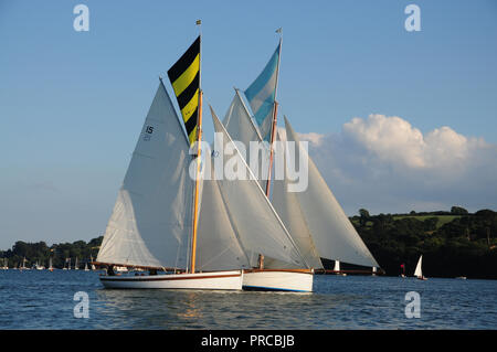 Traditional Falmouth working boats sailing in a regatta in the Fal estuary - Stock Photo