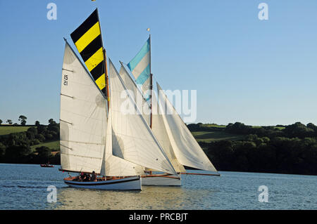 Traditional Falmouth working boats competing in a regatta in the Fal estuary - Stock Photo