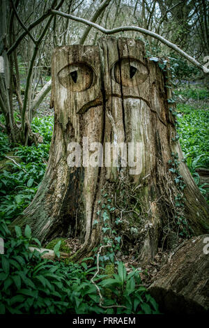 Monster in the Wood - Stock Photo