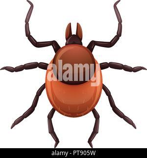 A mite tick on white background illustration - Stock Photo
