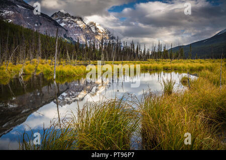 Tarn and mountains along Icefields Parkway. Highway 93 is a north-south highway in Alberta, Canada. It is also known as the Banff-Windermere Parkway s - Stock Photo