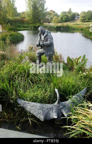 The London Wetlands Centre at Barnes UK - Stock Photo