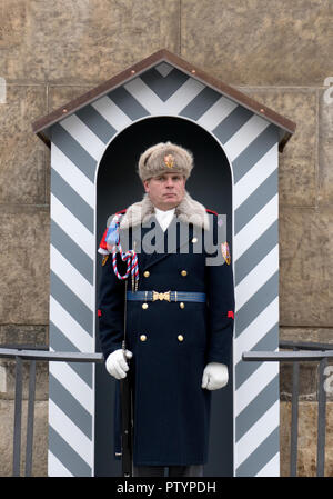 Sentry guard of the armed forces of the Czech Republic at the Prague Castle - Pražský hrad Prague, Czech Republic. - Stock Photo