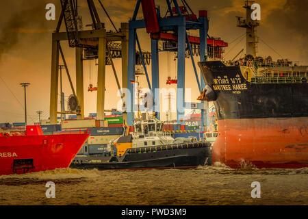 Deutschland, Hamburg, Övelgönne, Elbe, Hafen, Containerterminal, HHLA, Burchardkai, Containerschiff - Stock Photo