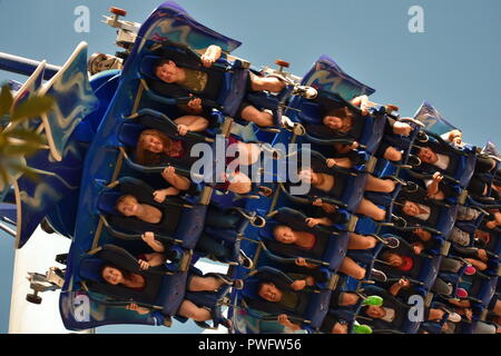 Orlando, Florida. September 09, 2018 Amazing Manta Roller Coaster at Seaworld Theme Park. - Stock Photo