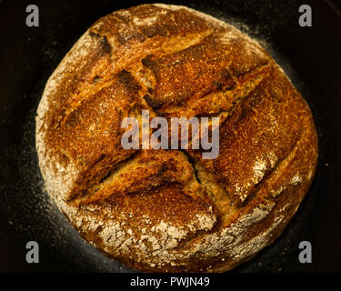 Homemade whole grain sourdough bread just came out of furnace. Baked in cast iron cooking pot. - Stock Photo
