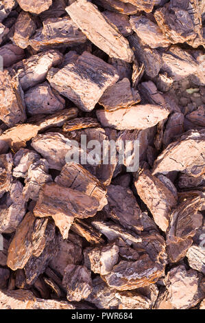 wooden chips mulch on the ground texture. background. - Stock Photo