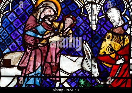 Our Lady of Strasbourg Cathedral. Stained glass window. The Flight into Egypt. 14 th century.  Strasbourg. France. - Stock Photo