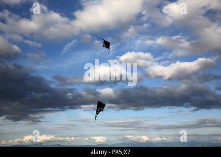 Kite flying on a cloudy evening at Plateau de Gergovie, Auvergne, France. - Stock Photo