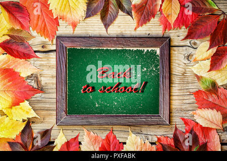 Frame: Back to school Frame from colored autumn leaves and an inscription Back to school on a wooden background. - Stock Photo
