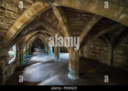 Finchale Priory, Durham, England, United Kingdom, Europe - Stock Photo