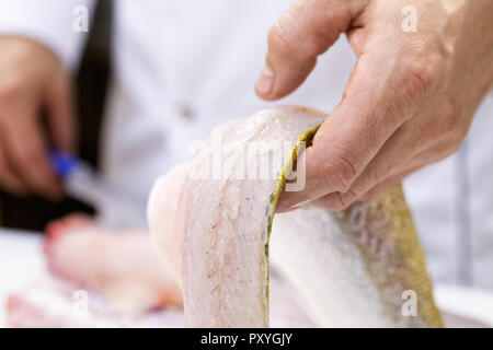 Detail of a chef holding a freshly cut zander fish fillet. - Stock Photo