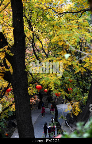 Beijing, China. 25th Oct, 2018. Tourists visit Badachu Park in Beijing, capital of China, Oct. 25, 2018. Credit: Li Jundong/Xinhua/Alamy Live News - Stock Photo