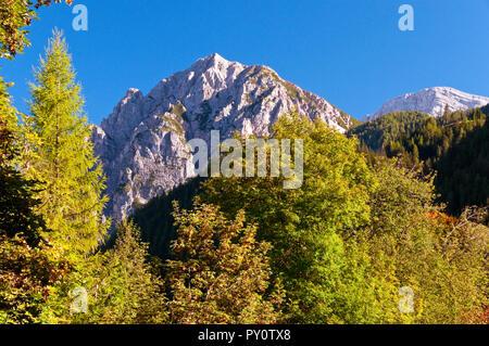Dolomite peak and tress around San Vigilio di Marebbe, Italy - Stock Photo