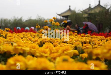 Yangzhou, China's Jiangsu Province. 25th Oct, 2018. Tourists view chrysanthemum flowers at Slender West Lake scenic spot in Yangzhou, east China's Jiangsu Province, Oct. 25, 2018. A chrysanthemum fair kicked off here on Thursday. Credit: Meng Delong/Xinhua/Alamy Live News - Stock Photo