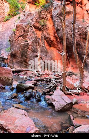 Kanarraville Falls, views from along the hiking trail of falls, stream, river, sandstone cliff formations Waterfall in Kanarra Creek Canyon by Zion Na - Stock Photo
