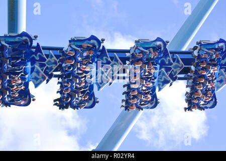 Orlando, Florida. October 19, 2018 Manta Roller coaster  is plopped right in the middle of the action, and the riders' screams reverberate throughout - Stock Photo