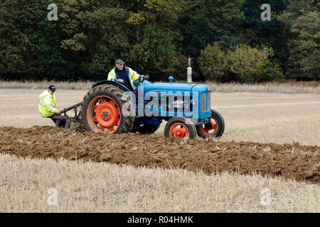 Classic Fordson Major tractor at a ploughing match during the 2018 Skeyton Trosh event in Norfolk. - Stock Photo