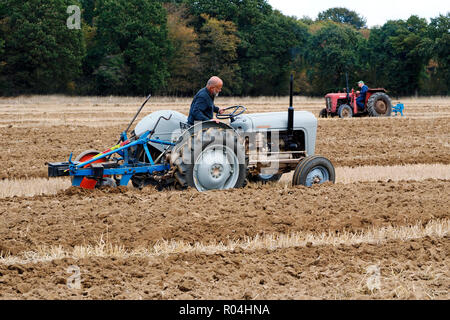 Classic Ferguson tractors at a ploughing match during the 2018 Skeyton Trosh event in Norfolk. - Stock Photo
