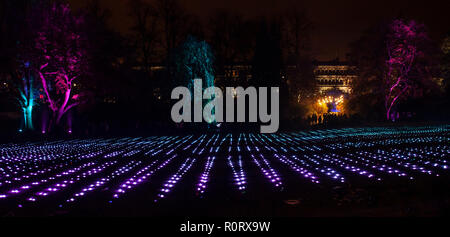 GlasGLOW, a winter event in which Glasgow Botanic Gardens are lit up at night. Looking over towards Grosvenor Terrace, off Great Western Road. - Stock Photo