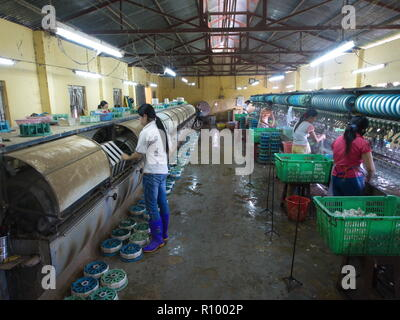 Silk Production Factory in the local village in Da Lat City. Travel in Vietnam in 2012, 5th December - Stock Photo