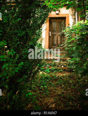 Abandoned home with overgrown path leading to front door - Stock Photo