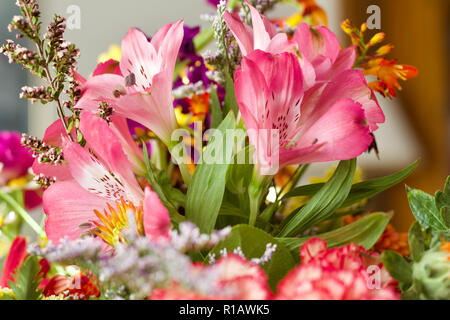 Close up view of beautiful pink Peruvian lily flowers in an indoor floral arrangement - Stock Photo